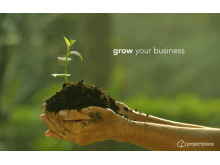 Projectplace: grow your business