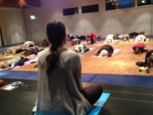 Yoga för dig-konventet 2013