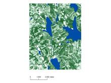 Utsnitt ur ny digital skogskarta från SLU