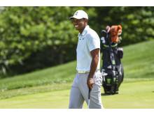 Tiger Woods er vært for Hero World Challenge med nogle af verdens bedste golfspillere.