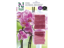 6772 Näringspinnar orkidé
