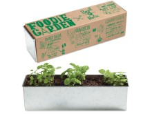 Odlingskit - Foodie Garden (3 plantor)