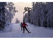 Västsverige Ulricehamn - cross country skiing- Photo Cred Roge (1)