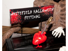 Halloween Festival Whitefield 2011