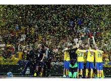 Svenska herrlandslaget i innebandy efter VM-guldet 2014