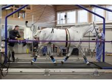 Mångmiljondonation till SLU-forskning om hältor hos häst