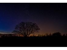 Nationaal Park Lauwersmeer bij nacht