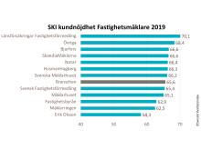 SKI kundnöjdhet Fastighetsmäklare 2019