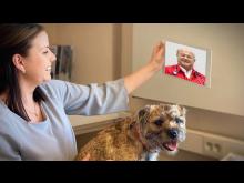 Videokonsultation (2)