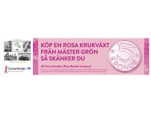 Köp en Rosa Krukväxt från Mäster Grön så bidrar du med 5 kronor till Cancerfondens Rosa Bandet-kampanj