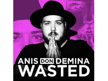 Anis_Don_Demina_Wasted_Omslag