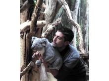 Tinaroo und sein Pfleger Tom Collins beim Einzug ins Koala-Haus