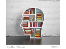 brainGuide Recherche Tool