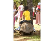 île Maurice_Activités enfants©MTPA_Bamba