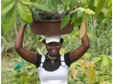 Cocoa woman