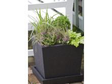 Höstkruka - blandade växter planterade i frosttålig kruka