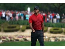 Tiger Woods har vundet Arnold Palmer Invitational otte gange i alt.