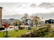 Sønderparken, Fredericia