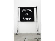 Gardar Eide Einarsson, Organise or Starve, 2009
