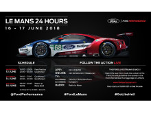 Ford Le Mans - Infographic