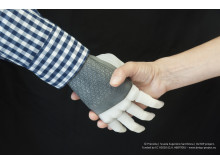 The first dexterous and sentient hand prosthesis