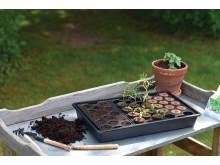 Minipluggbrätten med jord eller odlingsplugg