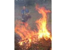 Röjning och eldning