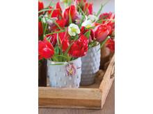 Röda tulpaner och Fritillaria meleagris i skön harmoni.