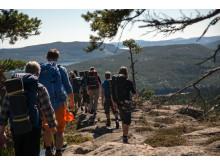 Höga Kusten Hike - Hikers