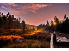 Harz Nasjonalpark, Goehteweg