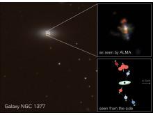 Galaxy NGC1377