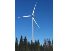 Tuuliwatti's Simo Halmekangas wind park