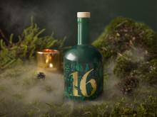 Blossa 16 i mossa och dimma.