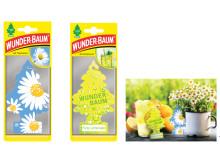WUNDER-BAUM  -  Gransläpp med nya dofter
