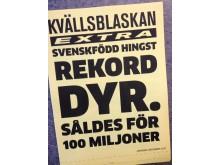 Svenskfödd hingst rekorddyr - Framtidsspanarnas löpsedel daterad år 2027