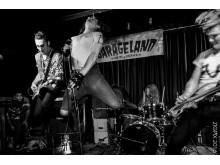 The Cavemen (NZ) live