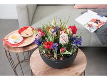 Kreative Frühjahrsbepflanzung mit CUBETO