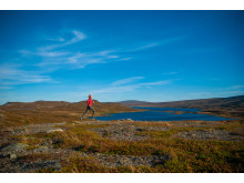 Fjällöpning Svansjön Tänndalen
