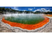 Rotorua och champagne pool - Nya Zeeland