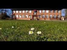 Vuxenutbildningen och AME på Malmgatan