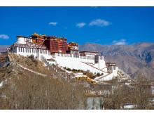 Potala i Lhasa Tibet