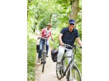 Utrecht en fietsen