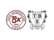 Tegs SK Hockey