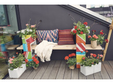 Pelargoner på balkongen