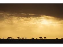 CS-011216-namibia_rx10-251