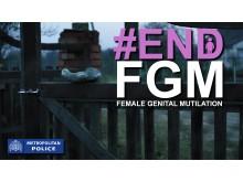 FGM Graphic
