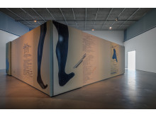 "Edgar Cleijne och Ellen Gallagher, installationsvy ""Better Dimension"" (2010), Bonniers Konsthall"