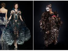 Mode i Feathers