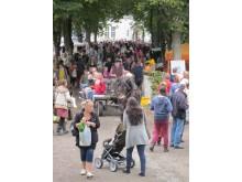 Skillebyholms höstmarknad 2012 no4