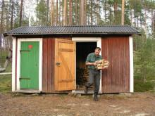 Skogssork i vanlig vedbod kan sprida sorkfeber
